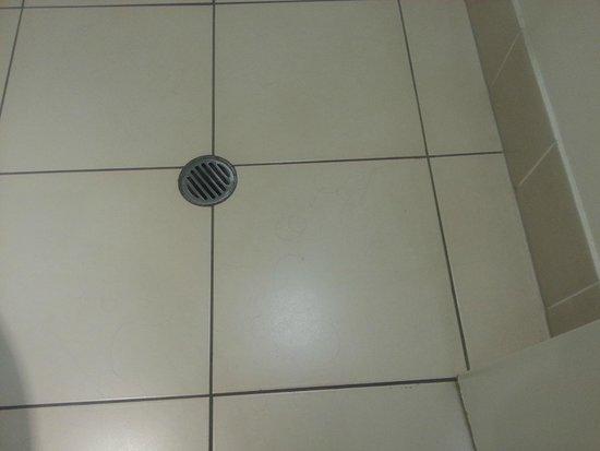 بارك ريجيس سيتي كوايز: Bathroom floor with someone else's hair