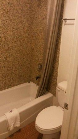 Motel 6 Manteca: Il bagno con una sola saponetta