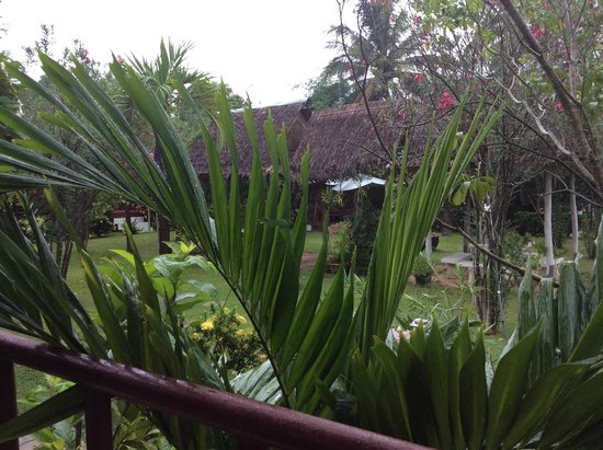 Thai Garden Inn : View from bungalow