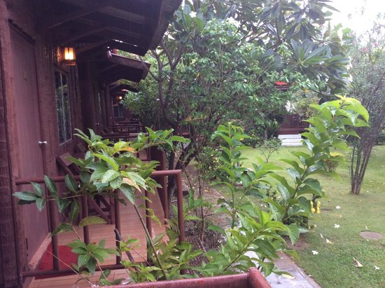 Thai Garden Inn : Lovely Garden