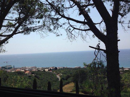 Ristorante Il Gabbiano: Panorama dalla veranda