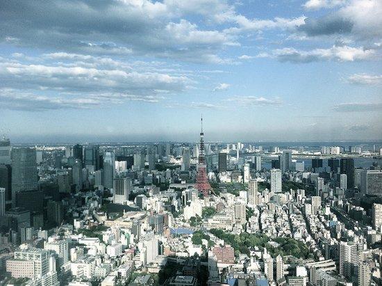 Park Hotel Tokyo : Zimmeraussicht auf Tokyo Tower