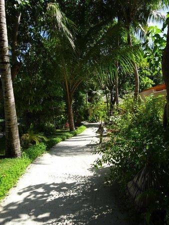 Veligandu Island Resort & Spa: grounds