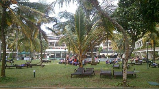 Eden Resort & Spa : tuin