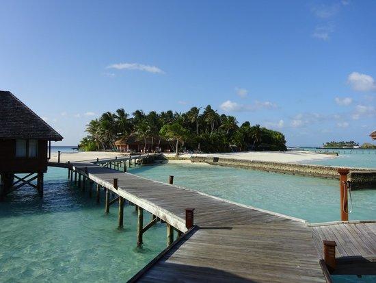 Veligandu Island Resort & Spa: island