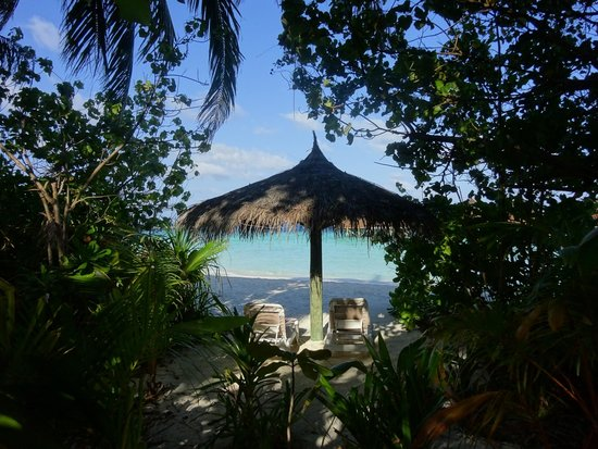 Veligandu Island Resort & Spa: lounge