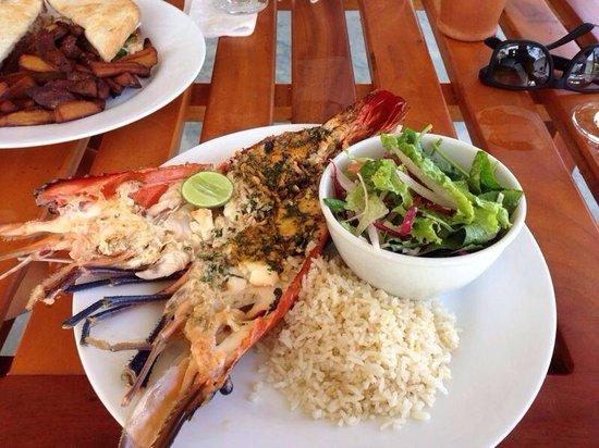 Cafe Ceylon: Langosta