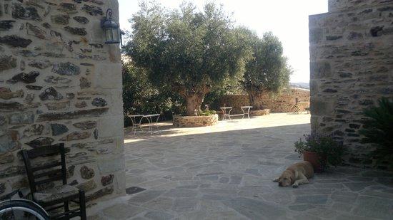 Hotel Petropoulakis God's Land : Un angolo della struttura
