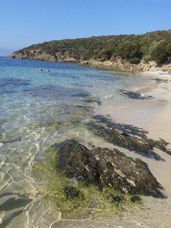 Spiaggia di Tuerredda : Tuerredda