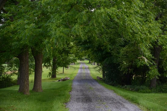 Morgan Samuels Inn: One of the Driveways leading to the house