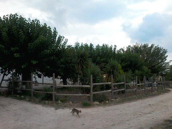 """Agriturismo La Vaccareccia: Veduta dell'esterno de """"La Vacareccia"""""""