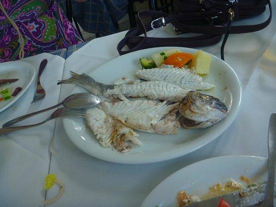 Arsenis Taverna Iseris : fish