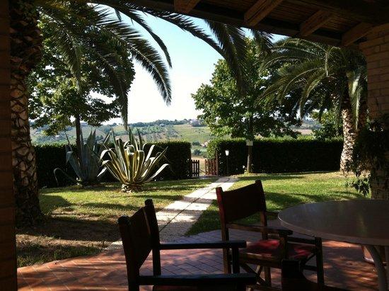 Country House Pecora Nera : vista dal portico sul giardino e ingresso piscina.