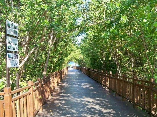Paradisus Playa del Carmen La Perla : Walkway to beach