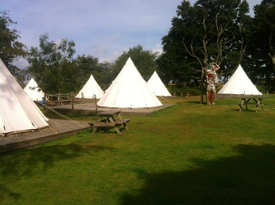 Pinewood Park: Teepee set out (nicer day)
