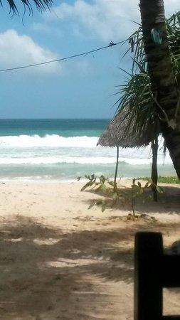 Wiener Dschungel : View of beach from restaurant