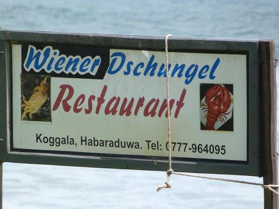 Wiener Dschungel : Beach view