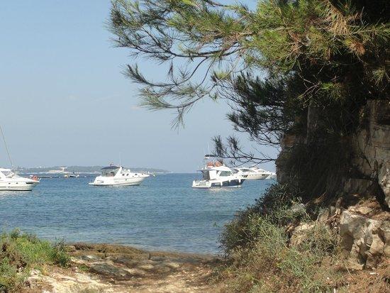 Île Sainte-Marguerite: Ausblick