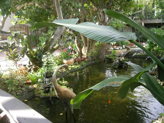 Best Western Naples Inn & Suites: a little pond by the hotel and pool