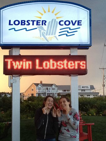 Lobster Cove: My twins about to enjoy a twin lobster dinner