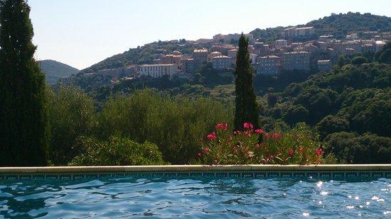 Rossi Hotel : Vue de la piscine