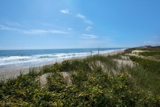 Hampton Inn & Suites Outer Banks / Corolla: Our Backyard