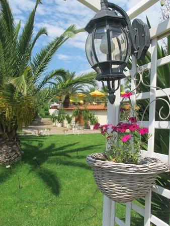 Oceanview Beach Hotel: Κήπος