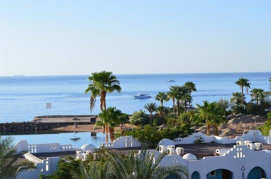 Domina Coral Bay Oasis: вид из окна