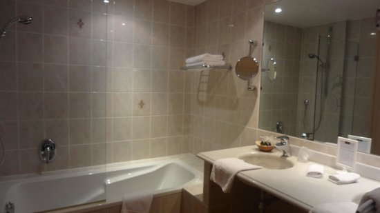 Le Cerf : Salle de bains-douche