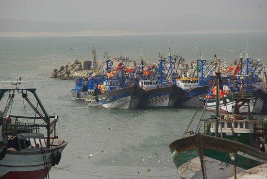 RIad Dar El Paco : Entrée du port d'Essaouira