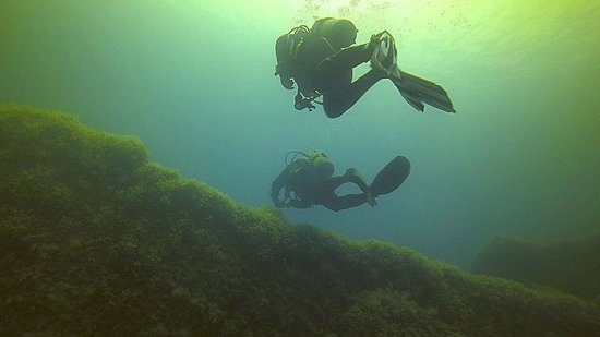 Neptunes Diving Malta: Up on to the deck