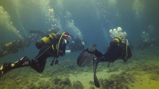 Neptunes Diving Malta: Off to the Maori