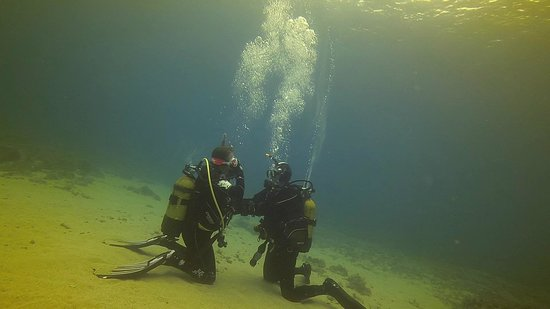 Neptunes Diving Malta: Exercises with Franca