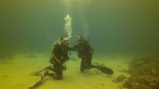 Neptunes Diving Malta: Last exercise completed im an Open Water Diver!