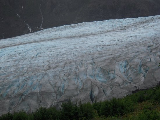 Exit Glacier Guides - Day Tours: View of the Glacier from the Harding Icefield Trail