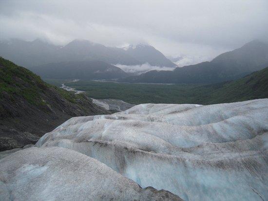 Exit Glacier Guides - Day Tours: On the glacier