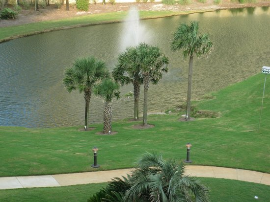 Edgewater Beach Condominium: View from Balcony