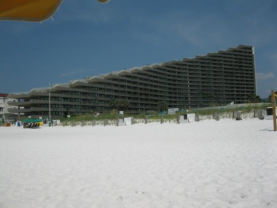 Edgewater Beach Condominium: View of condo from beach