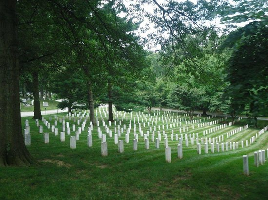 Arlington National Cemetery: One of many hillsides covered in headstones