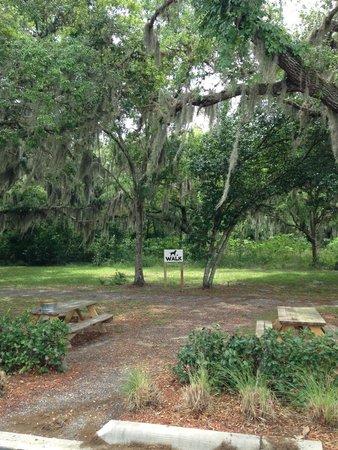 Country Inn & Suites by Radisson, Port Orange-Daytona, FL : Dog Walk Park - Pet Friendly