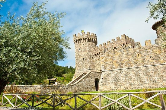 The Valley From Ramparts Picture Of Castello Di Amorosa