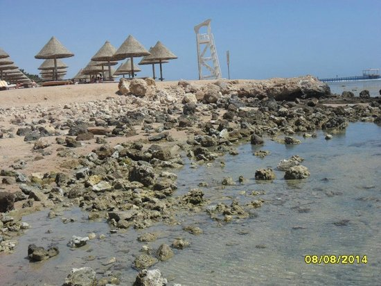 Sharm Grand Plaza: 10