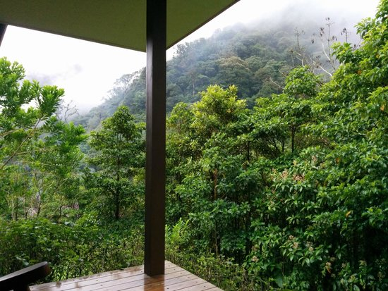 El Silencio Lodge & Spa : view from a room