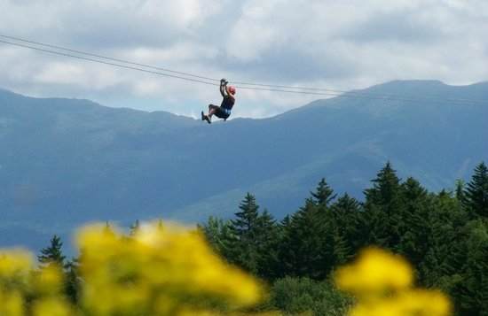 Bretton Woods Canopy Tour: Summer soaring!