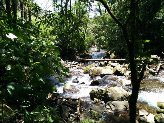 El Silencio Lodge & Spa: beautiful stream