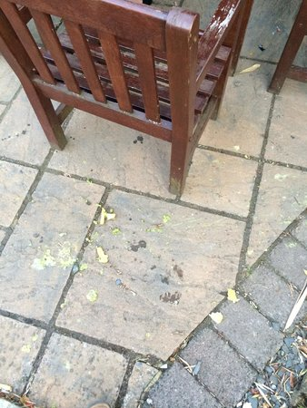 Gatwick Manor: Must have been a food fight before we arrived.
