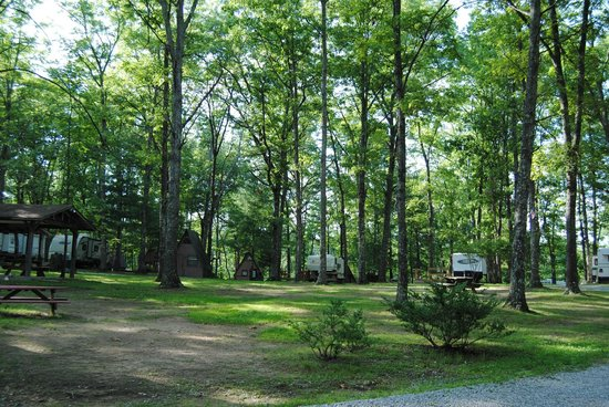 Pandora's Forest Resort & Nightclub : One of our primitive tent camping area