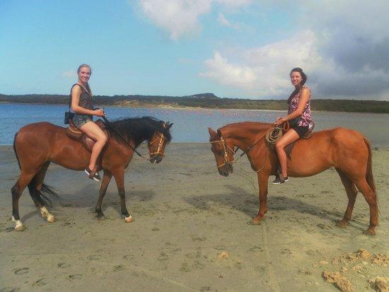 Van der Valk Kontiki Beach Resort: Paardrijden bij de zoutelanden geregeld door Kontiki Beach Resort