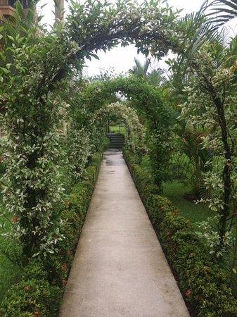 Hotel Magic Mountain: Garden path