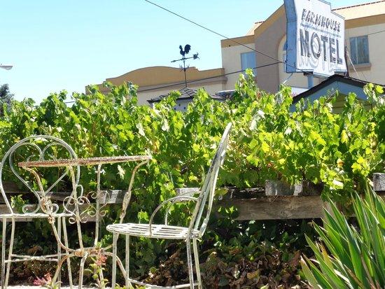 Farmhouse Motel: side of office